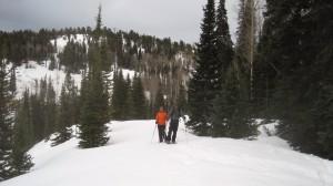 dv-snowshoeing (10)