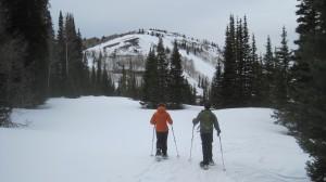 dv-snowshoeing (14)