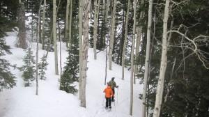 dv-snowshoeing (6)