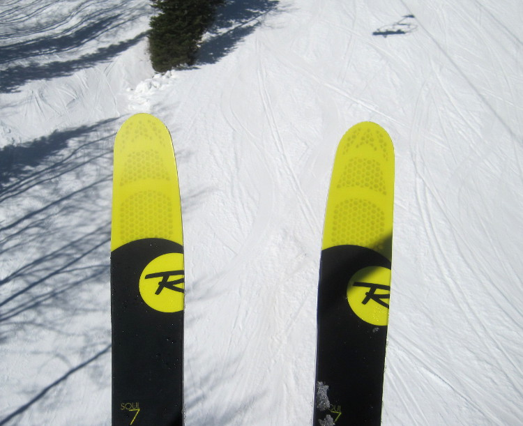 Carving skis powder and in between the