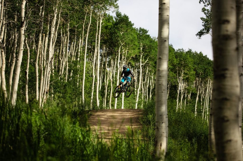 One Mountain Biker jump with lots of green trees around.