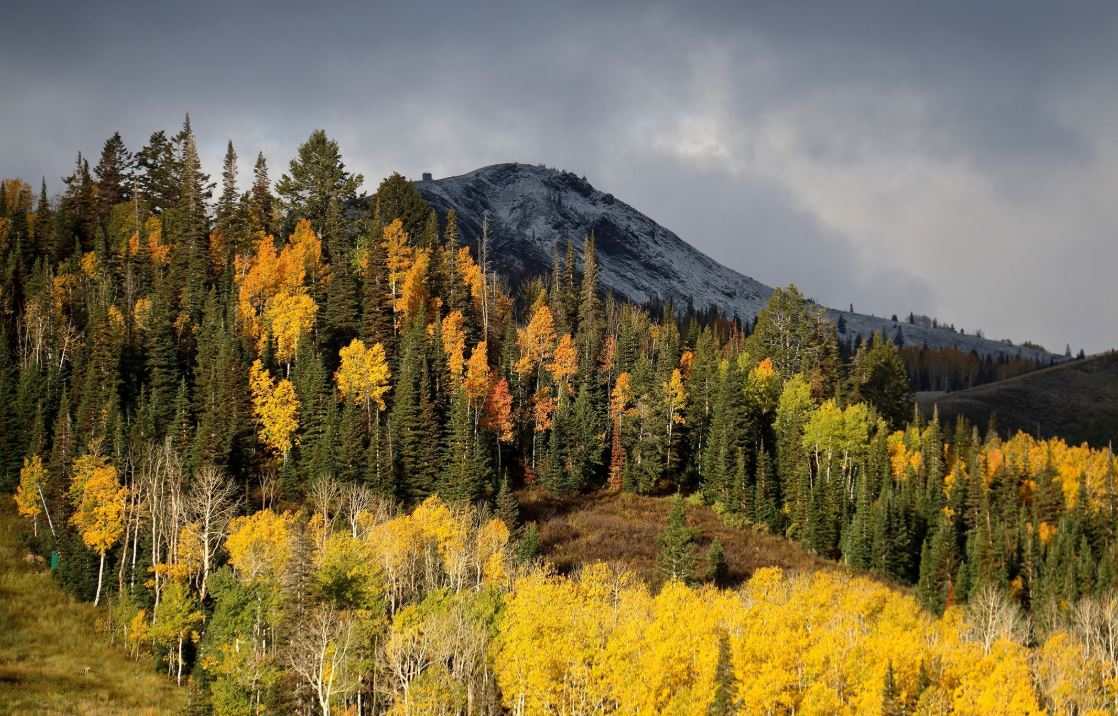 Fall Colors at Deer Valley